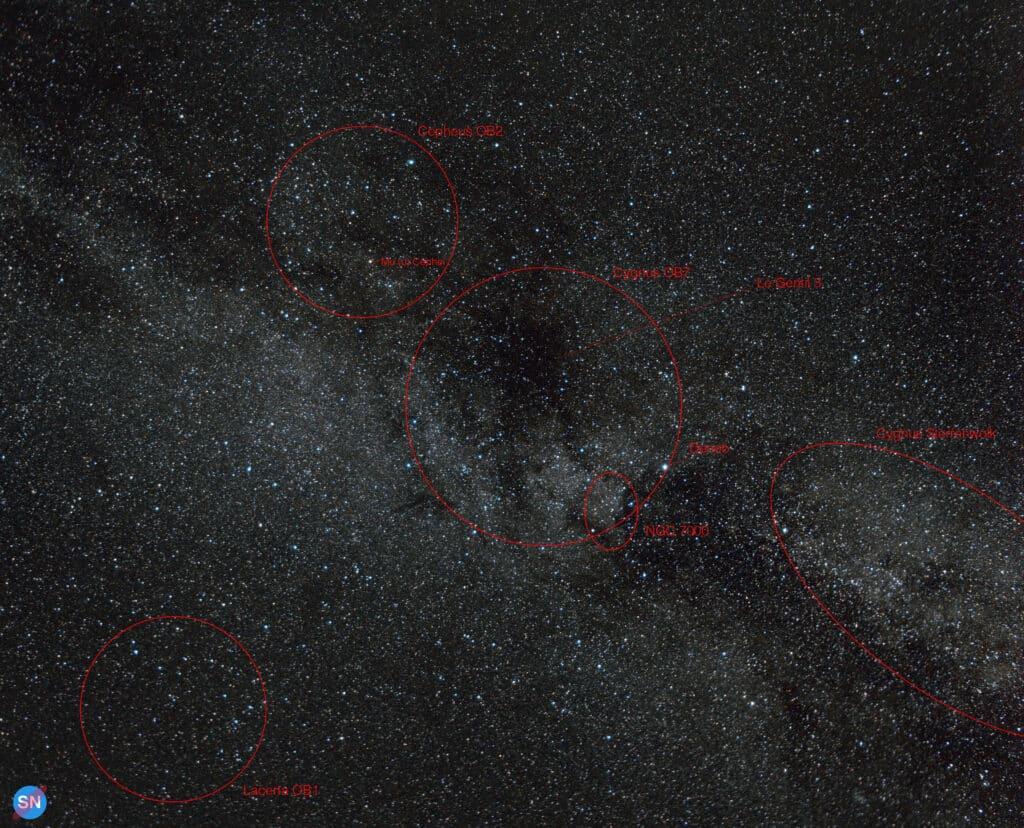 CygnusCepheus