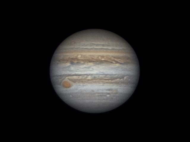 Mijn eerste Jupiter van dit jaar, gisterenavond genomen kort voor middernacht. De seeing was uitzond