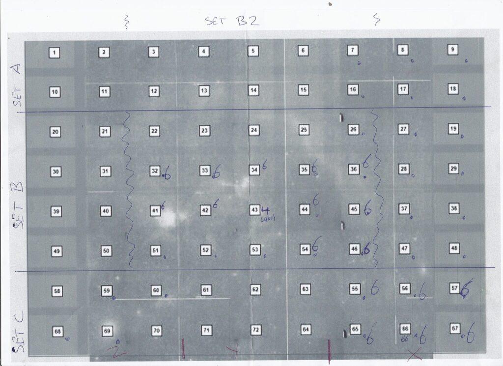 @bula Zie bijgaande tussenstand van het mozaiekschema. Wanneer ik de middensectie neem (p32-p54),
