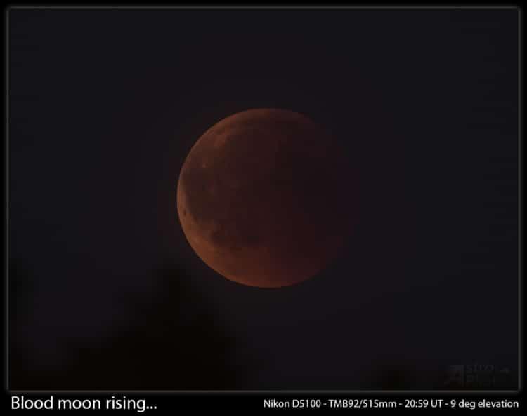 Bloed maan boven de bomen… Ik wachtte vol spanning op de maansverduistering, maar het leek erop da